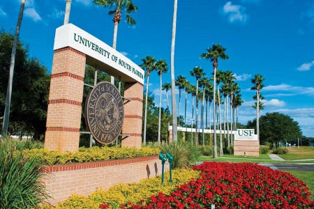 UNIVERSITY OF SOUTH FLORIDA - Top 100 trường đại học công hàng đầu